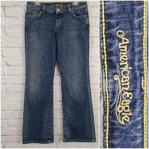 American Eagle Boyfriend 77 Jeans Distressed 10R